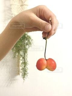食べ物,屋内,赤,手,手持ち,フルーツ,果物,さくらんぼ,人物,人,甘い,ポートレート,双子,新鮮,チェリー,ライフスタイル,手元