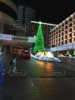 樹木,都会,クリスマス,明るい,クリスマス ツリー