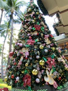 クリスマスツリーの写真・画像素材[2844076]