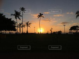 夕陽の写真・画像素材[2861558]