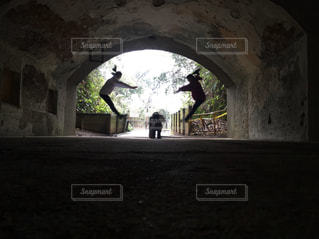 ジャンプの写真・画像素材[3025103]
