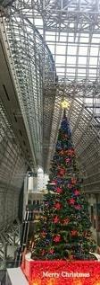 大きなクリスマスツリーとの出会いの写真・画像素材[2818863]