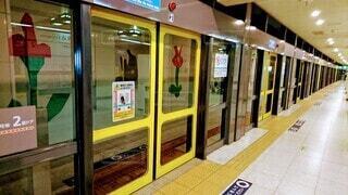 東京,駅,散歩,黄色,都市,扉,都会,ドア,地下鉄,鉄道,安全,ホームドア,プラットフォーム,長い,安全対策