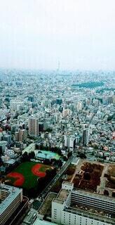 空,建物,街並み,散歩,スカイツリー,市街地,都市,景色,観光,タワー,都会,高層ビル,ドライブ,都内,スカイライン