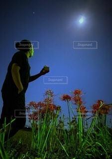 中秋の名月〜彼岸花と〜の写真・画像素材[3737705]
