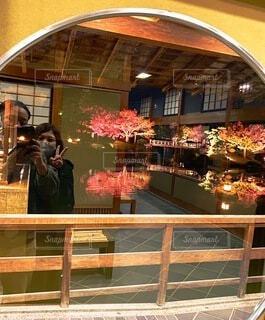 窓越しに見える紅葉と鏡越しに映る私たちの写真・画像素材[3908044]