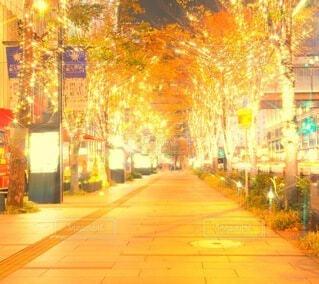 夜,イルミネーション,都会,ライトアップ,道,高層ビル,クリスマス,照明,歩道,買い物,梅田,装飾,明るい,デート,通り,一眼レフ,ショッピング,グランフロント大阪,街路灯,インスタ映え,うめきた広場,シャンパンゴールド,映え写真,グランフロントクリスマス