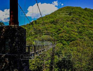山にかかる吊り橋の写真・画像素材[4407663]