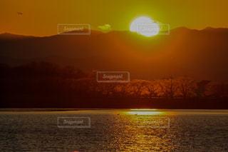 風景,空,屋外,太陽,夕暮れ,水面,光,白鳥,沼