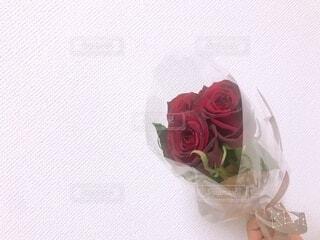 花,花束,花瓶,バラ,プレゼント,手持ち,布,人物,ポートレート,ライフスタイル,草木,手元