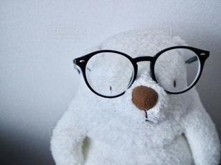 ファッション,アクセサリー,白,かわいい,眼鏡,ぬいぐるみ,モノトーン,シンプル,暮らし,テディベア,ライフスタイル,イメージ,クロ,クマ,おしゃれ,メガネ,黒縁眼鏡