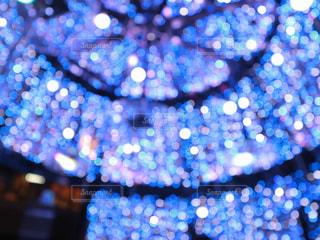 クリスマスツリーの中の写真・画像素材[2824000]