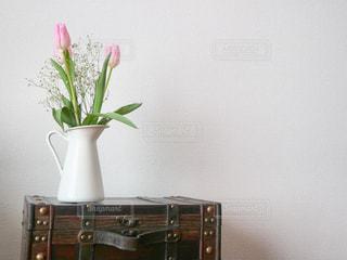 スーツケースの上に座っている花瓶の写真・画像素材[3000963]
