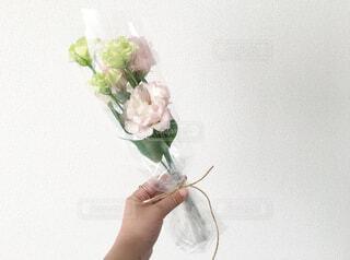 花,屋内,ピンク,花束,かわいい,手,バラ,プレゼント,手持ち,人物,壁,ポートレート,暮らし,ナチュラル,ライフスタイル,ギフト,手元,おしゃれ