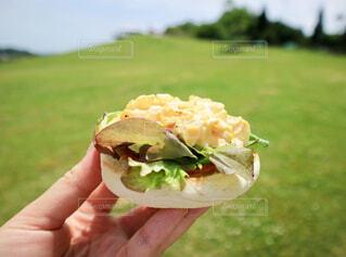 食べ物,空,屋外,草原,手,草,手持ち,ピクニック,人物,人,サンドイッチ,卵,ポートレート,暮らし,たまごサンド,ライフスタイル,手元,おしゃれ,オープンサンドイッチ