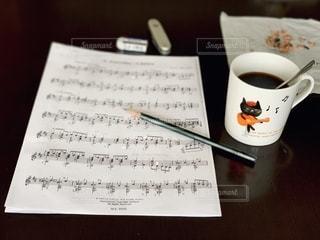 猫のギター弾きの写真・画像素材[2760266]