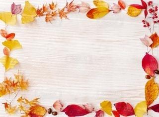 秋の落ち葉でスペースの写真・画像素材[2997556]