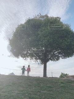 風景,公園,夕暮れ,景色,影,女の子,男の子,草木