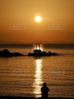 鳥居と鳥と海を照らす光の道の写真・画像素材[3006574]