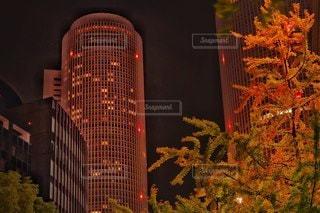 ビルのタワーと紅葉のタワーの写真・画像素材[2750749]