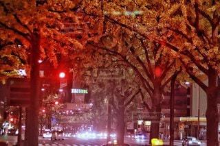 深夜のストリートの写真・画像素材[2752495]