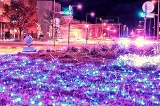 イルミネーションが彩る街の写真・画像素材[2768226]