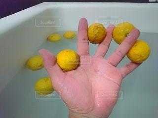 今年初の柚子風呂の写真・画像素材[2812656]