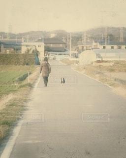 犬とお散歩の写真・画像素材[2922173]