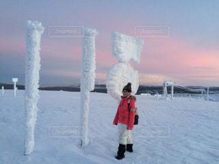 氷点下の世界の写真・画像素材[2812181]