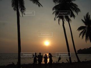 女性,友だち,風景,海,空,屋外,海外,太陽,ビーチ,砂浜,夕暮れ,水面,海岸,景色,影,日没,光,樹木,旅行,ヤシの木,タイ,プーケット,夕陽,サンセット,女子旅,草木,パーム,4人
