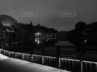 夜の公園の写真・画像素材[3345488]