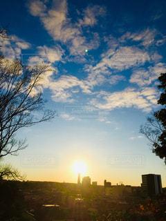 風景,空,屋外,太陽,光,樹木,日の出,初日の出