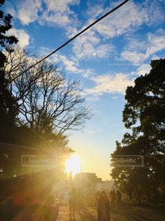 自然,空,屋外,太陽,日光,光,樹木,初日の出