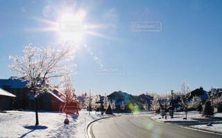空,冬,雪,屋外,太陽,道路,光,樹木,日中,クラウド