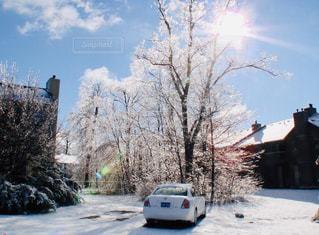 空,雪,屋外,太陽,車,道路,光,樹木,道,車両,クラウド