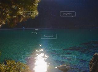 自然,空,屋外,太陽,水面,光,樹木