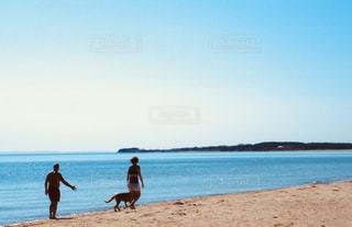 海岸のひとコマの写真・画像素材[2864204]