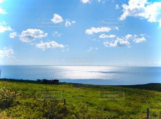 自然,風景,空,屋外,太陽,緑,草原,雲,水面,景色,光,草,大地,高原,草木,眺め,日中,クラウド