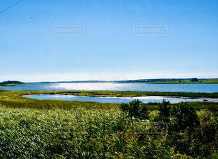 自然,風景,空,屋外,湖,太陽,水面,景色,光,草,新緑,草木,日中,クラウド