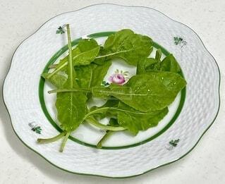 食べ物,風景,テーブル,野菜,食品,食材,フレッシュ,ベジタブル