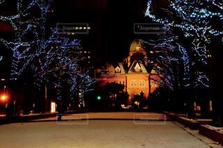 12月の北海道庁の写真・画像素材[2822896]