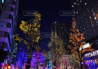 夜にライトアップされた都市の写真・画像素材[2825553]