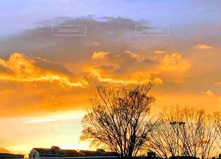 夕暮れ時の空の雲の群れの写真・画像素材[2879700]