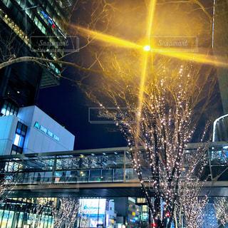建物,冬,夜,大阪,イルミネーション,都会,ライトアップ,高層ビル,ツリー,買い物,梅田,関西,ショッピング,グランフロント大阪,シャンパンゴールド