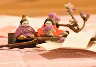 桃の枝とお雛様の写真・画像素材[2994703]