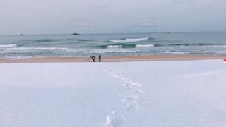 雪道散歩の写真・画像素材[2812848]