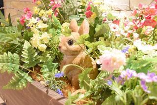 花に埋もれる可愛いうさぎの写真・画像素材[3029478]