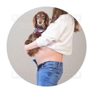帽子をかぶった茶色と白の犬の写真・画像素材[3360202]