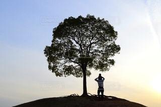 丘を歩いている男の写真・画像素材[3394617]
