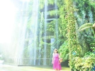 シンガポール旅行の写真・画像素材[3486632]